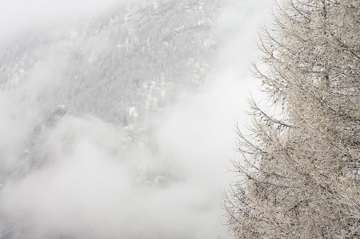 nevicata-4